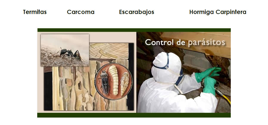 Preservación de Madera